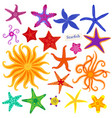sea stars set multicolored starfish on a white vector image