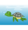 turtle cartoon vector image vector image