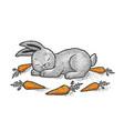 cartoon sleeping rabbit sketch vector image vector image