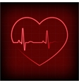 heart on a cardiogram vector image vector image