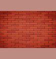 red brick wall texture closeup vector image vector image