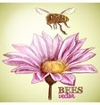Flying honey bee and blossoming flower background vector image