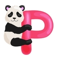 letter p with animal panda for kids abc education vector image vector image