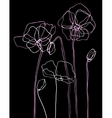 pink poppies on a black background vector image