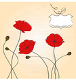 poppies floral background vector image