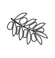 olive branch it is black icon vector image