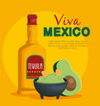 avocado sauce with tequila traditional mexican vector image vector image