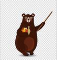 cute cartoon bear teacher holding pointer and vector image