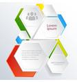 digital web infographics vector image vector image