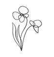 minimalist line art flower poppy contour drawing vector image vector image