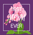 mothers day pink orchid frame violet background vector image