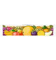 seamless panoramic pattern with tropical fruits vector image