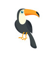toucan bird icon flat style vector image vector image
