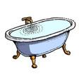 cartoon image of bath full of water vector image vector image