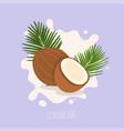 coconut milk coconut on a milk splash vector image