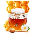 Honey jar with dipper and comb print vector image vector image