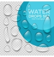 Realistic transparent water drops set vector image vector image