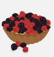 red fruit tartlet vector image vector image