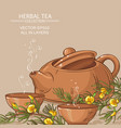 rooibos tea in teapot and tea bowls vector image vector image
