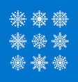 snowflakes new year and christmas decoration vector image