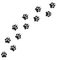 tiger paw print silhouette vector image vector image