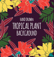 tropical plant background vector image vector image