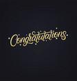 congratulations hand written lettering vector image vector image