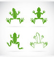 group of frogs design on white background vector image vector image