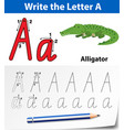 letter a tracing alphabet worksheets vector image