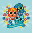 skulls with flowers and ribbon to traditional vector image vector image