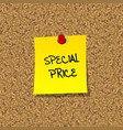 Special price vector image vector image