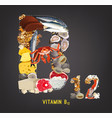 vitamin b12 image vector image vector image