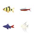 angelfish common barbus neonfish set vector image vector image