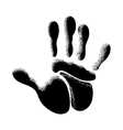 The human hand vector image vector image