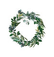 watercolor modern decorative element wreath green vector image