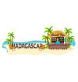 madagascar travel palm drink summer lounge vector image