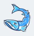 Barracuda sea life vector image