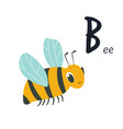 funny image a bee and letter b zoo alphabet vector image