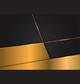gold blank on dark grey circle mesh vector image vector image