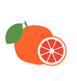 grapefruit a whole grapefruit and a cut stock vector image
