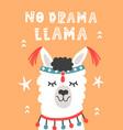 no drama llama hand drawn poster vector image