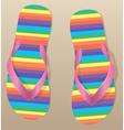 pair of flip-flops vector image vector image
