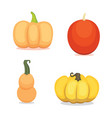 set cartoon pumpkin isolated vector image vector image