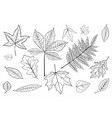 set leaves black on white eps 10 vector image