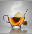 transparent glass cup with tea bag spoon and hot vector image vector image
