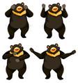 a set of bear shmoney dance vector image vector image