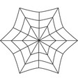 spiderweb isolated on white background vector image vector image