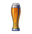 weizen beer glass vector image vector image