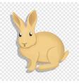 wild rabbit icon cartoon style vector image