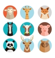 Animals avatars vector image